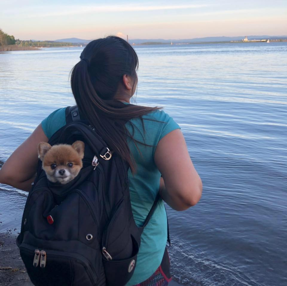 girl with dog in backpack